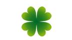 clove leaf2